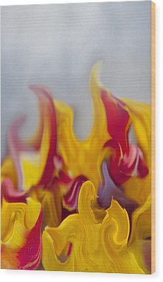 Flower Flames Wood Print by Svetlana Sewell