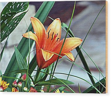 Flower Friend Wood Print by Joetta Beauford