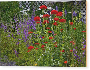 Flower Garden Wood Print by Johanna Bruwer