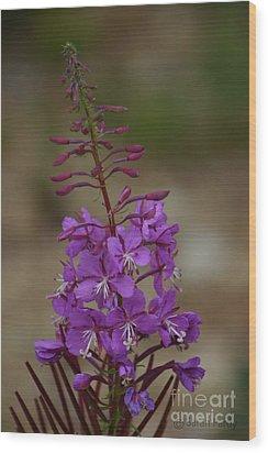 Flower I Wood Print