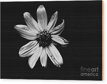 Flower In The Dark Wood Print by Xn Tyler