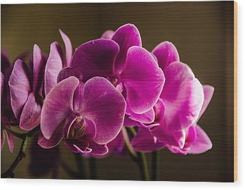 Flower In The Window Light Wood Print