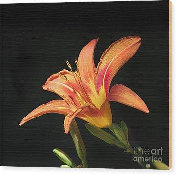Flower Wood Print by Jelena Jovanovic