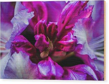 Flower Love  Wood Print by Naomi Burgess