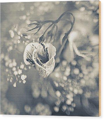 Flower Wood Print by Mark-Meir Paluksht