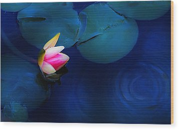 Flower On The Lily Wood Print by Cary Shapiro