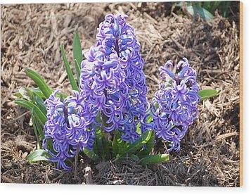 Flower One Wood Print by Ron Milburn