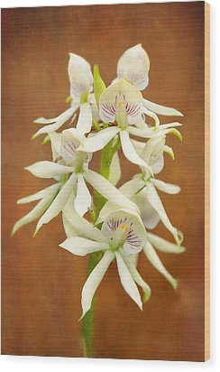 Flower - Orchid - A Gift For You  Wood Print by Mike Savad