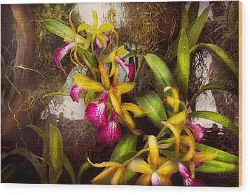 Flower - Orchid - Cattleya - There's Something About Orchids  Wood Print by Mike Savad
