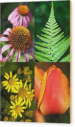 Flower Photo 4 Way Wood Print by Richard Thomas
