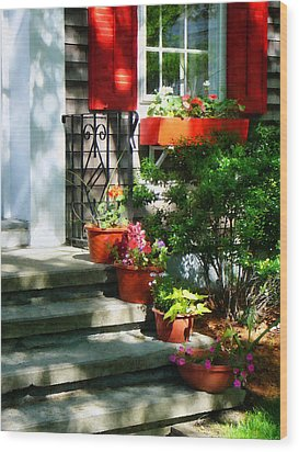 Flower Pots And Red Shutters Wood Print by Susan Savad