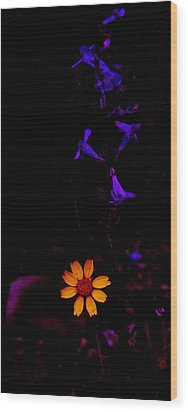 Wood Print featuring the photograph Flower Power by Atom Crawford