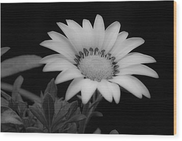 Flower  Wood Print by Ron White