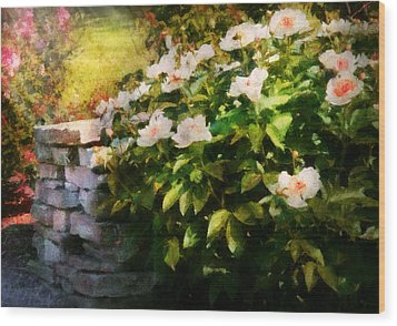 Flower - Rose - By A Wall  Wood Print by Mike Savad