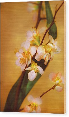 Flower - Sakura - A Touch Of Spring Wood Print by Mike Savad