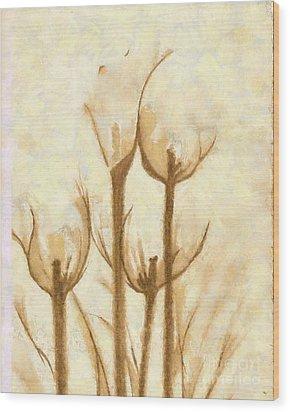Flower Sketch Wood Print by Yanni Theodorou