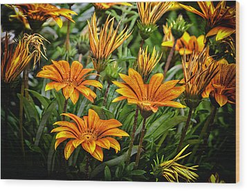 Flower Town Wood Print