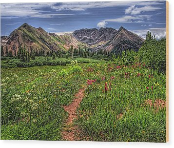 Wood Print featuring the photograph Flower Walk by Priscilla Burgers