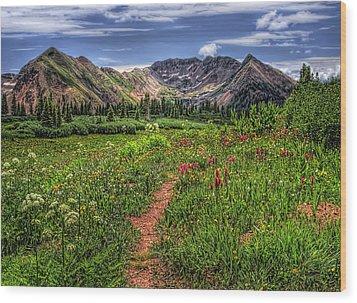 Flower Walk Wood Print by Priscilla Burgers