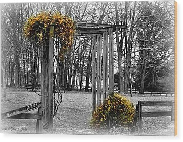 Wood Print featuring the photograph Flowering Archway by Tara Potts