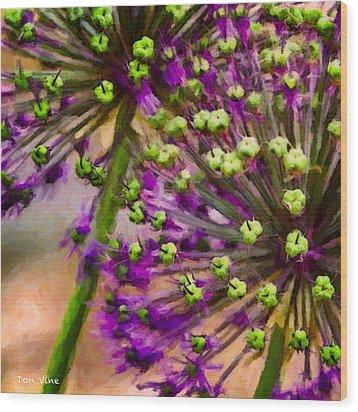 Flowering Onion Wood Print