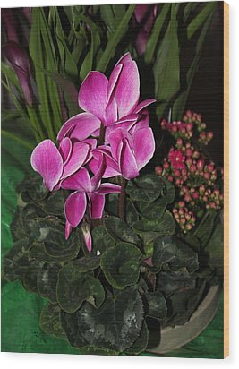 Wood Print featuring the photograph Flowering Plant by Cyril Maza