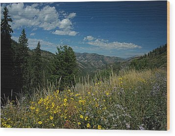 Flowering Yellowstone Wood Print by Larry Moloney