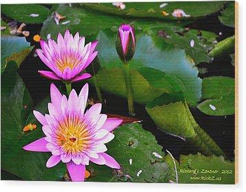 Flowers 2 Wood Print by Richard Zentner