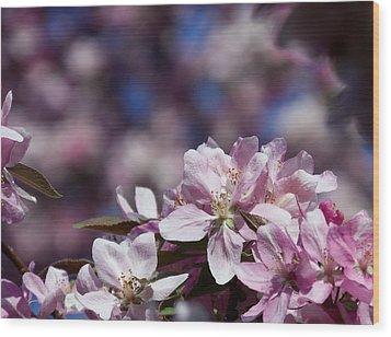 Flowers Wood Print by Adam L
