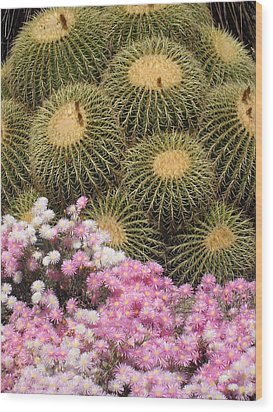 Flowers And Cacti Wood Print