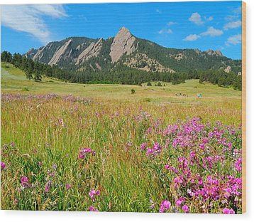 The Flatirons Colorado Wood Print by Dan Miller