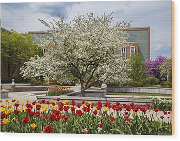 Flowers And Tree At Michigan State University  Wood Print by John McGraw