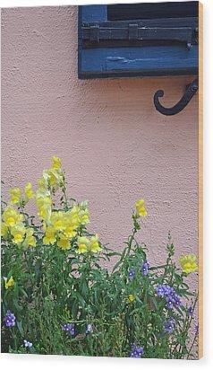 Flowers And Window Frame Wood Print