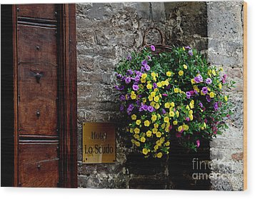 Wood Print featuring the photograph Flowers - Assisi by Theresa Ramos-DuVon