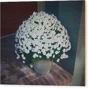Flowers At The Door Wood Print by Brian Wallace