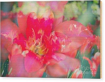 Flowers Bloom In Multiples Wood Print by Sonja Quintero