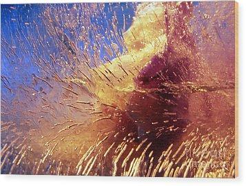 Flowers In Ice Wood Print by Randi Grace Nilsberg
