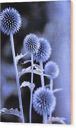 Flowers In The Metal Wood Print by Tommytechno Sweden