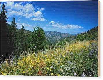 Flowers In Yellowstone Wood Print by Larry Moloney