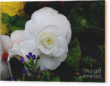 Wood Print featuring the photograph Flowers by Ivete Basso Photography