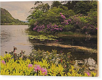Flowers Of Ireland Lakes Wood Print by Will Burlingham