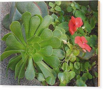 Flowers Of Laguna Woods Wood Print
