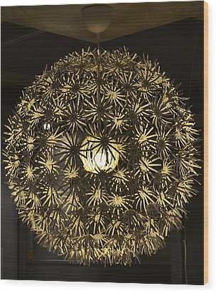 Wood Print featuring the photograph Flowers Of Light by Mary Zeman