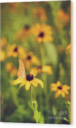 Flowers Of Summer Wood Print by Darren Fisher