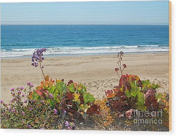 Wood Print featuring the photograph Flowers On Pismo Beach by Debra Thompson
