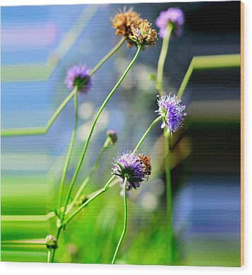 Flowers On Summer Meadow Wood Print by Tommytechno Sweden
