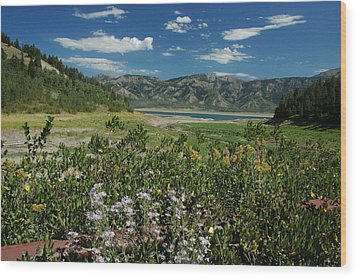 Flowers On The Palisades Resevoir Idaho Wood Print by Larry Moloney
