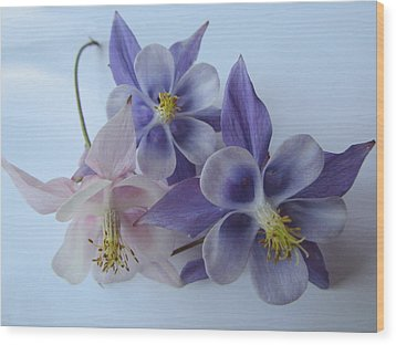 Flowers On White Wood Print
