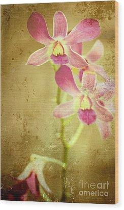 Flowers Wood Print by Sophie Vigneault