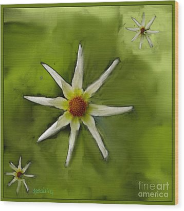 Flowers White Wood Print by Nedunseralathan R